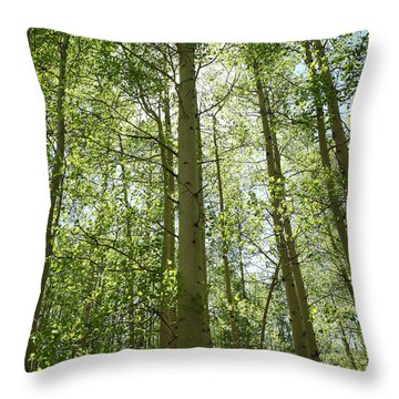 Aspen Green Throw Pillow by Eric Glaser