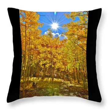 Throw Pillow featuring the photograph Aspen Grove Aglow by Diane Alexander
