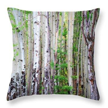 Aspen Grove In The White Mountains Throw Pillow