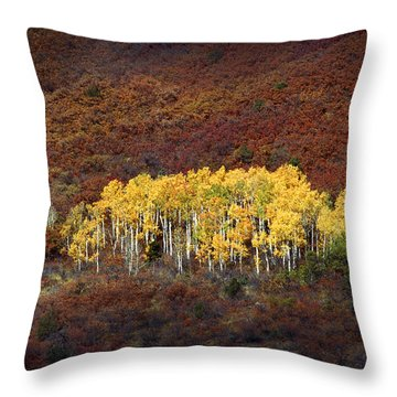 Aspen Grove Throw Pillow by Rich Franco