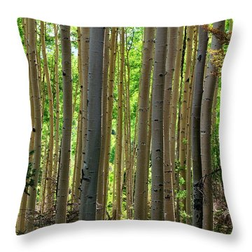Aspen Grove Throw Pillow