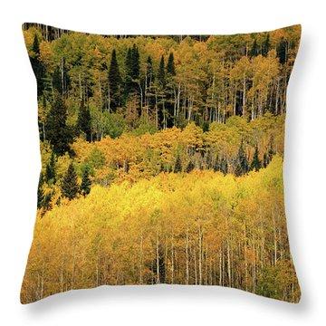 Aspen Groves Throw Pillow