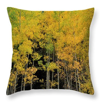 Throw Pillow featuring the photograph Aspen Haven  by Ron Cline