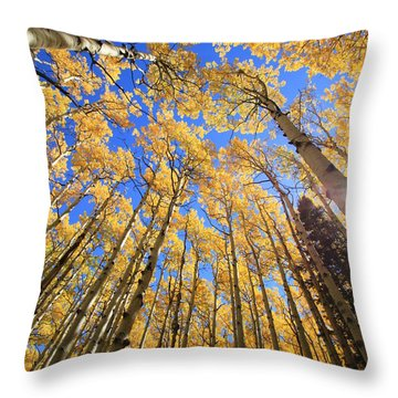 Aspen Hues Throw Pillow