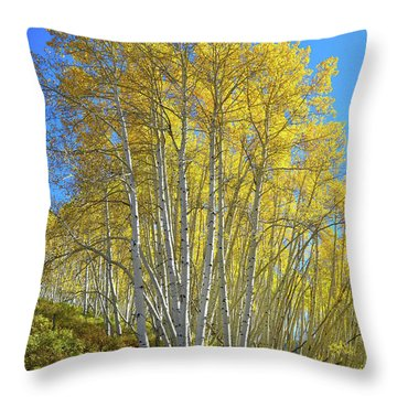 Throw Pillow featuring the photograph Aspen Lane by Ray Mathis