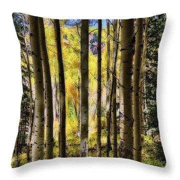 Aspen Mood - Autumn - Colorful Colorado Throw Pillow by Jason Politte