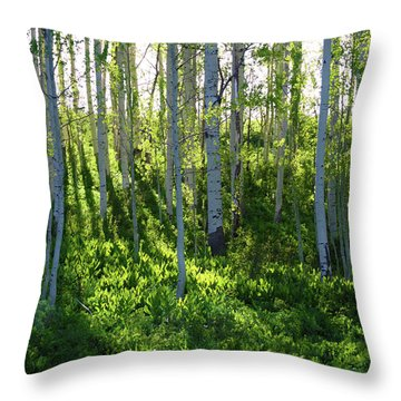 Throw Pillow featuring the photograph Aspen Morning 1 by Marie Leslie