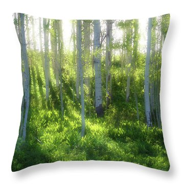Throw Pillow featuring the photograph Aspen Morning 3 by Marie Leslie