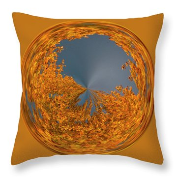 Throw Pillow featuring the photograph Aspen Orb by Bill Barber