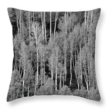 Aspen Pattern Throw Pillow