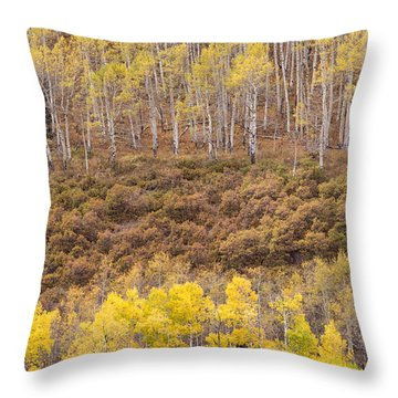 Throw Pillow featuring the photograph Aspen Patterns by Patricia Davidson
