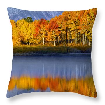Aspen Reflection Throw Pillow
