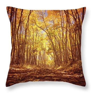 Aspen Road Throw Pillow