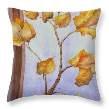 Aspen  Throw Pillow