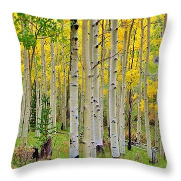 Aspen Slope Throw Pillow by Ellen Heaverlo