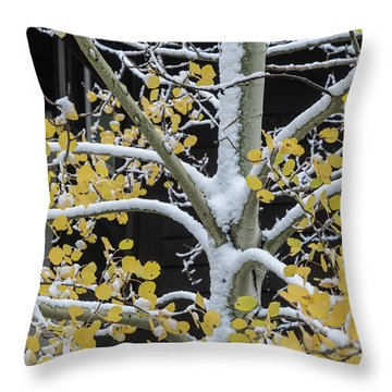 Aspen Snow Throw Pillow