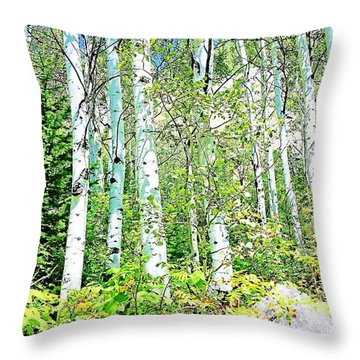 Aspen Splender Steamboat Springs Throw Pillow