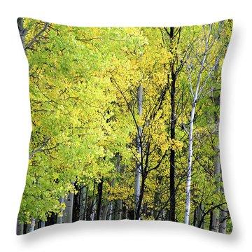 Aspen Splendor Throw Pillow