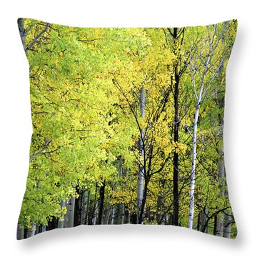 Aspen Splendor Throw Pillow