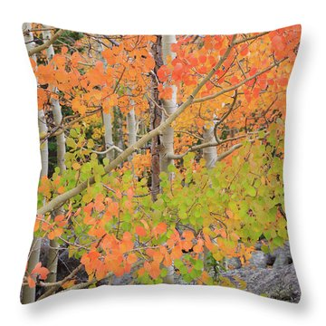 Throw Pillow featuring the photograph Aspen Stoplight by David Chandler