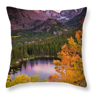 Mountain Landscape Throw Pillows