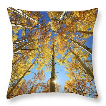 Forests Throw Pillows