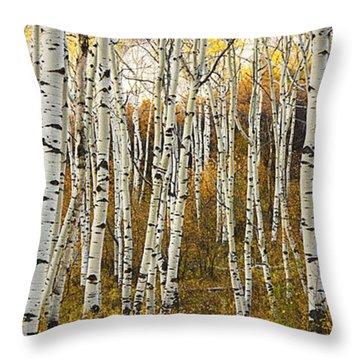 Aspen Tree Grove Throw Pillow