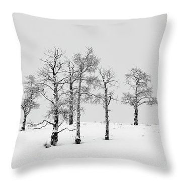 Aspen Tree Line-up Throw Pillow