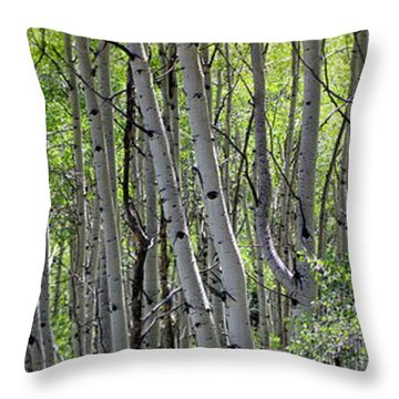 Aspen Vertirama Throw Pillow
