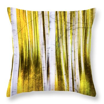 Aspen Wonderland Throw Pillow by Bjorn Burton