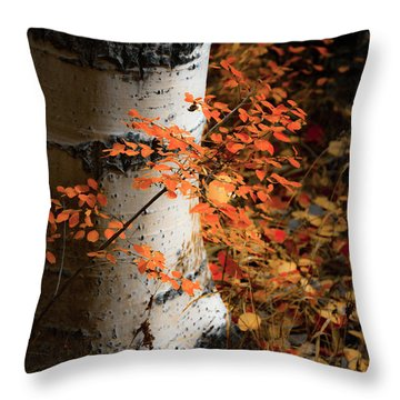 Aspen Woods Throw Pillow by The Forests Edge Photography - Diane Sandoval