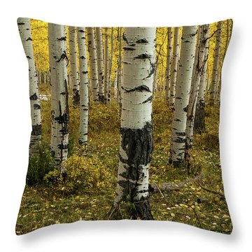 Aspens - 0245 Throw Pillow