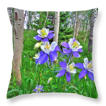 Aspens And Columbines Throw Pillow by Scott Mahon