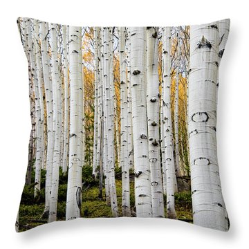 Aspens And Gold Throw Pillow