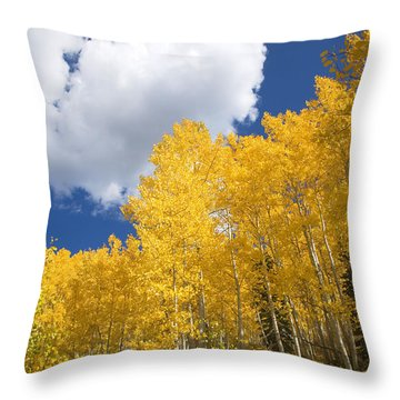 Aspens And Sky Throw Pillow by Ron Dahlquist - Printscapes