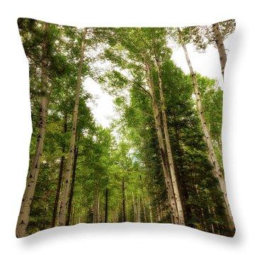 Throw Pillow featuring the photograph Aspens Galore by Rick Furmanek