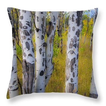 Throw Pillow featuring the photograph Aspens by Gary Lengyel