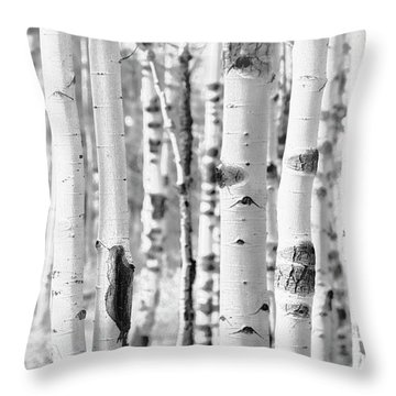 Throw Pillow featuring the photograph Aspens In Black And White  by Saija Lehtonen