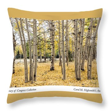 Aspens In Conejos County In Colorado, Near The New Mexico Border Throw Pillow by Carol M Highsmith