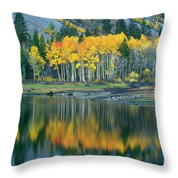 Aspens In Fall Color Along Lundy Lake Eastern Sierras California Throw Pillow