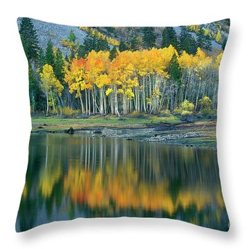 Aspens In Fall Color Along Lundy Lake Eastern Sierras California Throw Pillow by Dave Welling