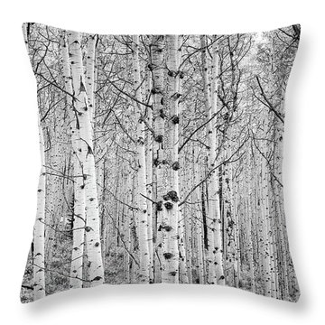 Aspens In High Key Throw Pillow