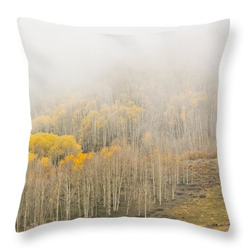 Aspens In The Clouds Throw Pillow