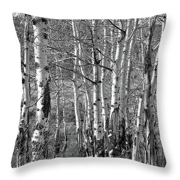 Aspens Throw Pillow by Kathy Russell