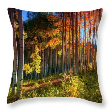 Throw Pillow featuring the photograph Aspens Of The West Elk Mountains by John De Bord