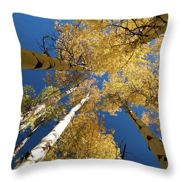 Throw Pillow featuring the photograph Aspens Up by Steve Stuller