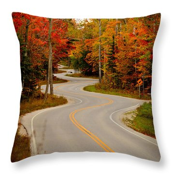 Winding Road Throw Pillows