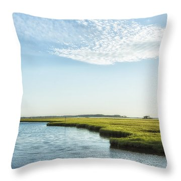 Assateague Island Throw Pillow