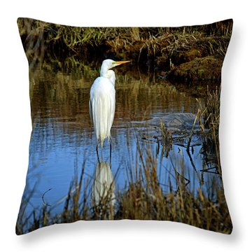 Assateague Island Great Egret Ardea Alba Throw Pillow