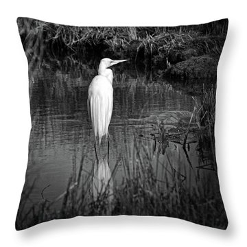 Assateague Island Great Egret Ardea Alba In Black And White Throw Pillow